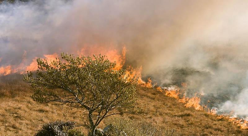 Wypalanie traw ciąg dalszy! Strażacy wciąż gaszą pożary