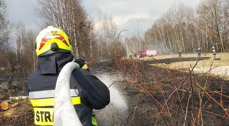 Seria pożarów w regionie. Ruszył sezon na wypalanie trawy