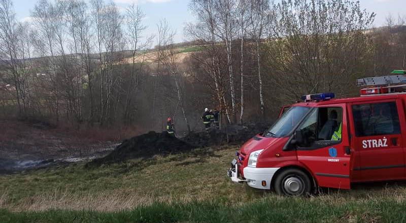 Kolejne pożary trawy – tym razem w Brzezinach