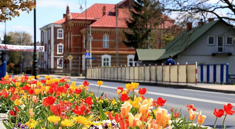 Barwnie w Ropczycach – wiosenne nasadzenia