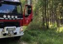 Strażacy gaszą pożar lasu w Klęczanach