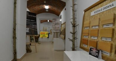 NIEDZIELA Z DREWNEM w Powiatowym Centrum Edukacji Kulturalnej w Ropczycach, czyli rodzinne spotkania z kulturą, historią i sztuką