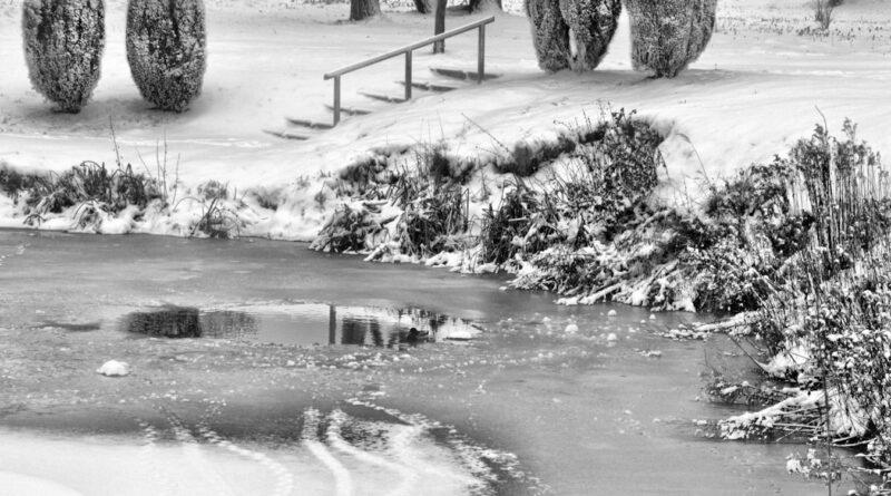 """Park """"Buczyna"""" w zimowej scenerii i w czarno-białej oprawie"""