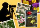 Kolejna edycja Konkursu Fotograficznego NIEZNANE CHOĆ BLISKIE